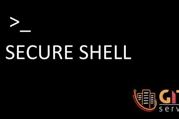 نحوه اتصال SSH به سرور مجازی بدون استفاده از کلمه عبور